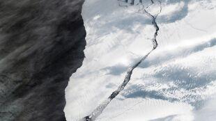 Góra lodowa oderwała się od lodowca na Antarktydzie. NASA pokazuje jej zdjęcie