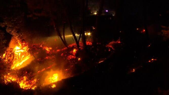 Pożar lasu sosnowego we Francji. <br />Ryzyko kolejnych zwiększają upały