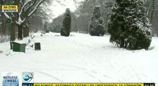 W Białymstoku wiosny nie widać (TVN24)